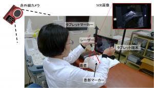 Virtual Slicer